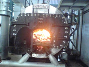 Can we use biomass fuel in coal-fired boilers?