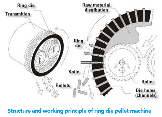 structure of ring die pellet machine